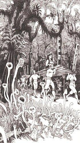 vatran-auraio-ilustracja